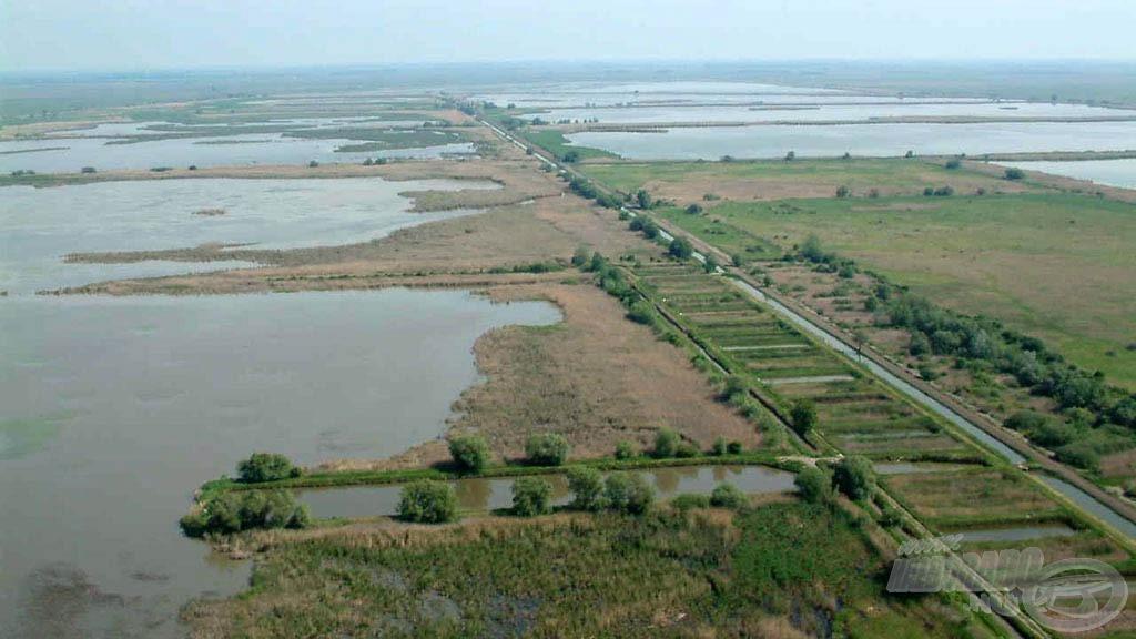 Ameddig a szem ellát, víz, víz és víz. A Hortobágyi Halgazdaság közel 6000 hektáron működtet halastavakat…