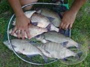 Horgászat a Csőhídi pályán
