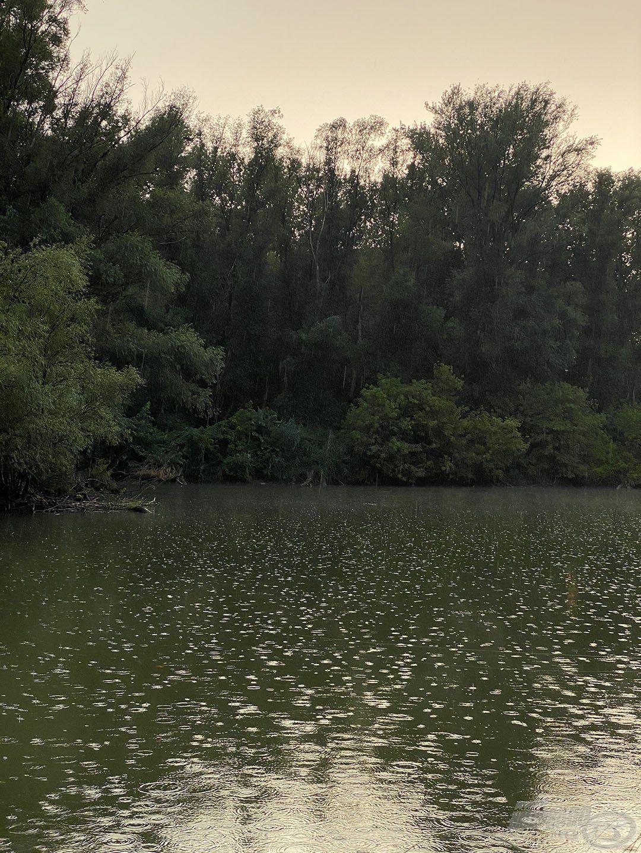 Ez a terület sem úszta meg az esőt, majd az éjszakai vihart, de jelentem, túléltük és hamarosan újra támadok, mert itt MINDIG óriási élmény a horgászat!!!