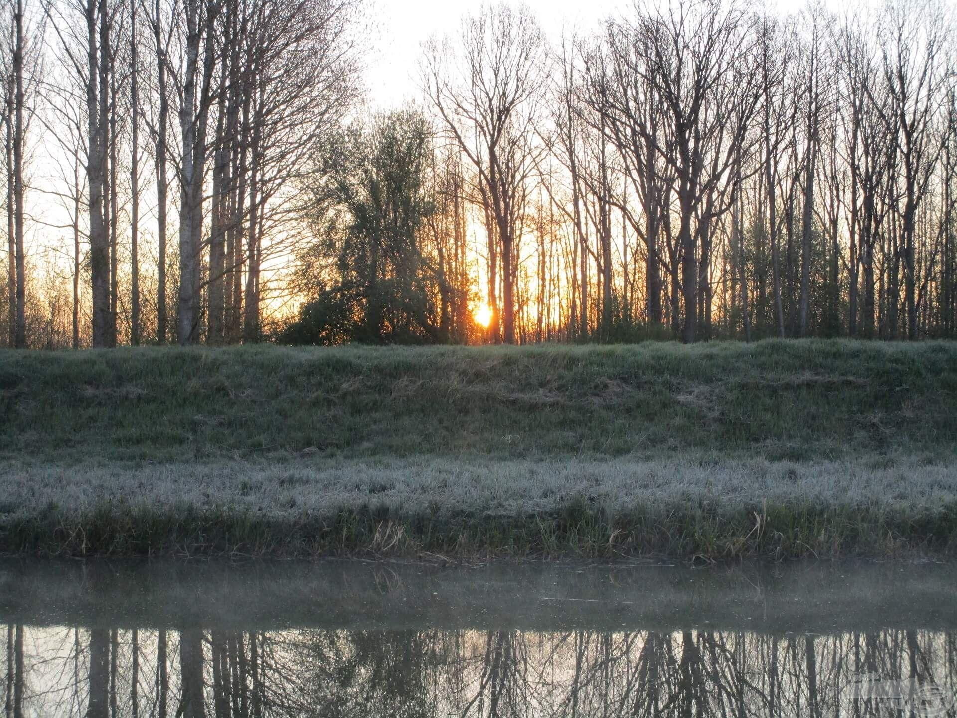 Korán érkeztem, de a nap lassan előbukkant a rügyező fák közül