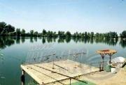 Horgászkalandok a törpe pontyok hazájában