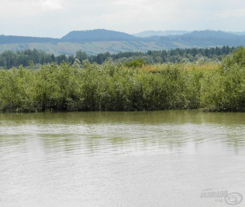 A szőke Dunajec