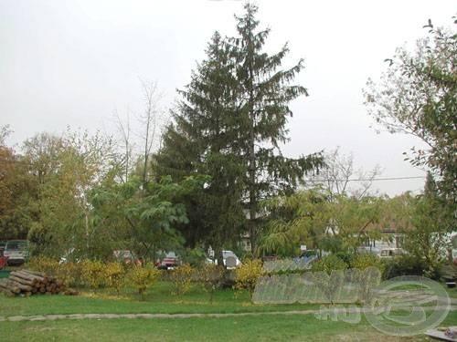 Gondozott kert, padokkal, tűzrakó hellyel, tollaslabdapályával, haltisztító asztallal