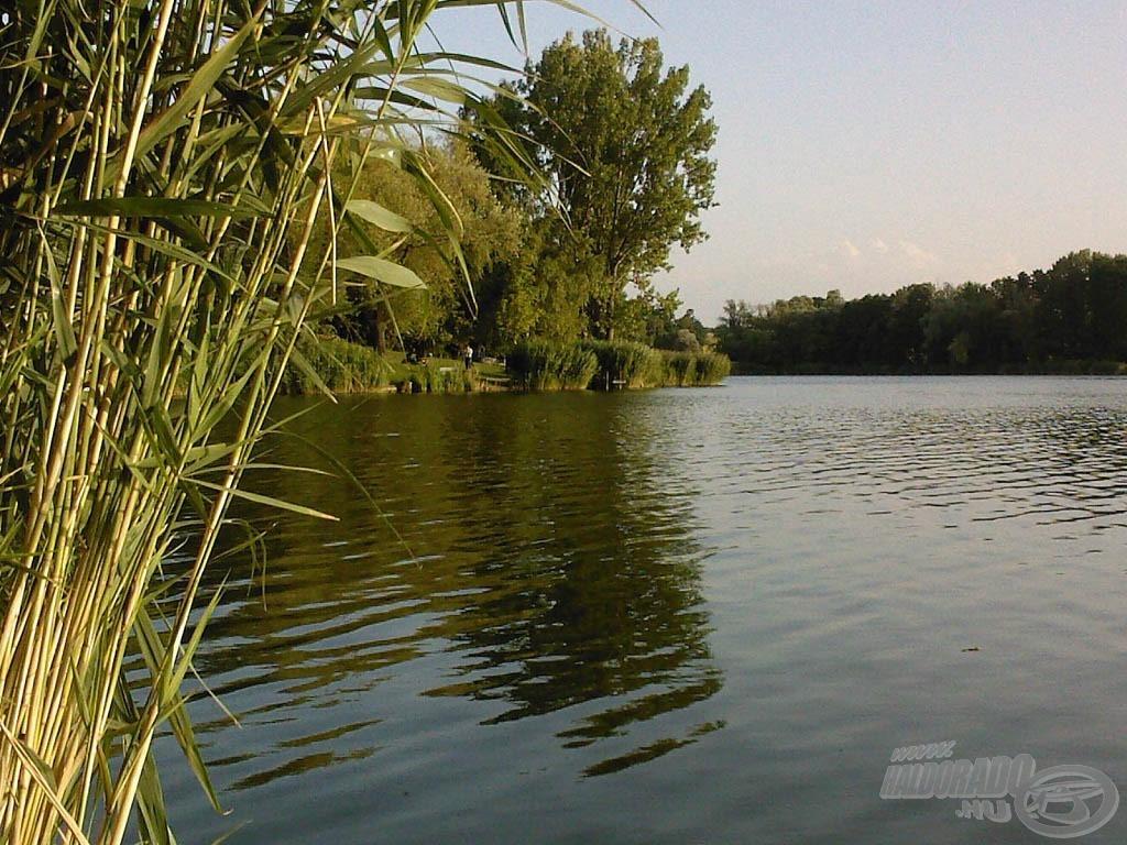 A nagy tó egyes részein már fel sem tűnik, hogy valójában emberi kéz alkotta