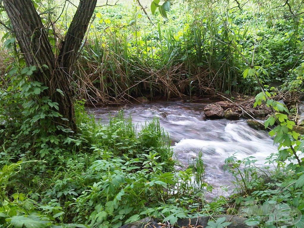 … ilyenkor hegyi patakként ömlik a víz a túlfolyón át a kis tóból a nagy tóba