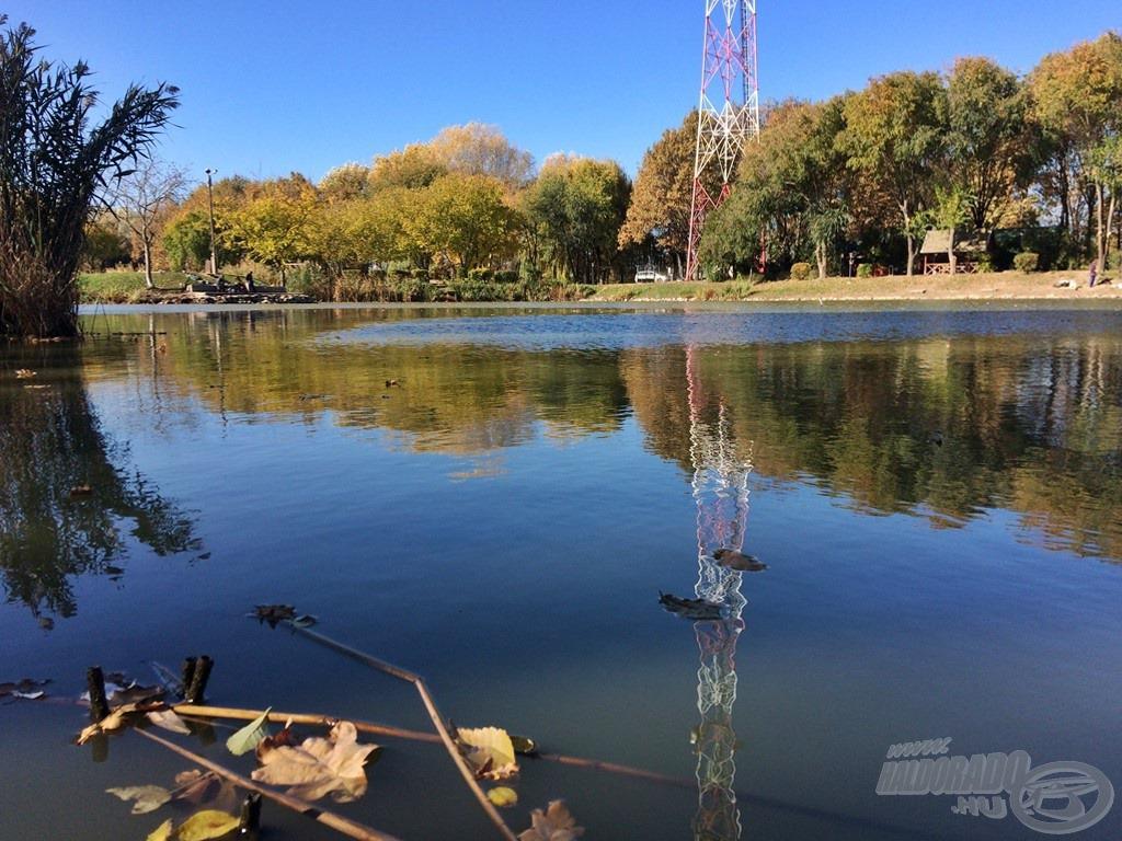 Barátságos vendéglátás, rendezett környezet, fantasztikus halak. Ezekkel tudom jellemezni ezt a tavat. Érdemes egy próbát tenni itt, akár december végén is, ha az időjárás engedi