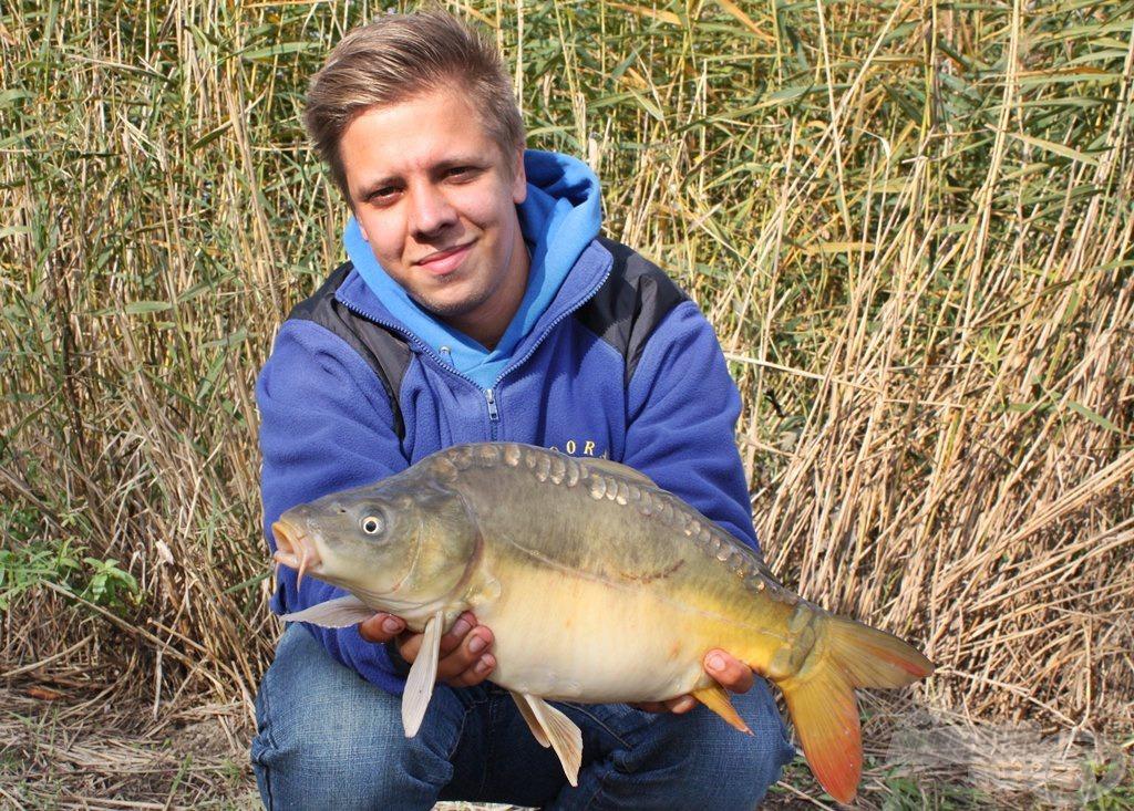 Egy szép, 2 kg körüli tükrös tisztelt meg egy gyors fénykép erejéig, nem tudott ellenállni a halas finomságoknak