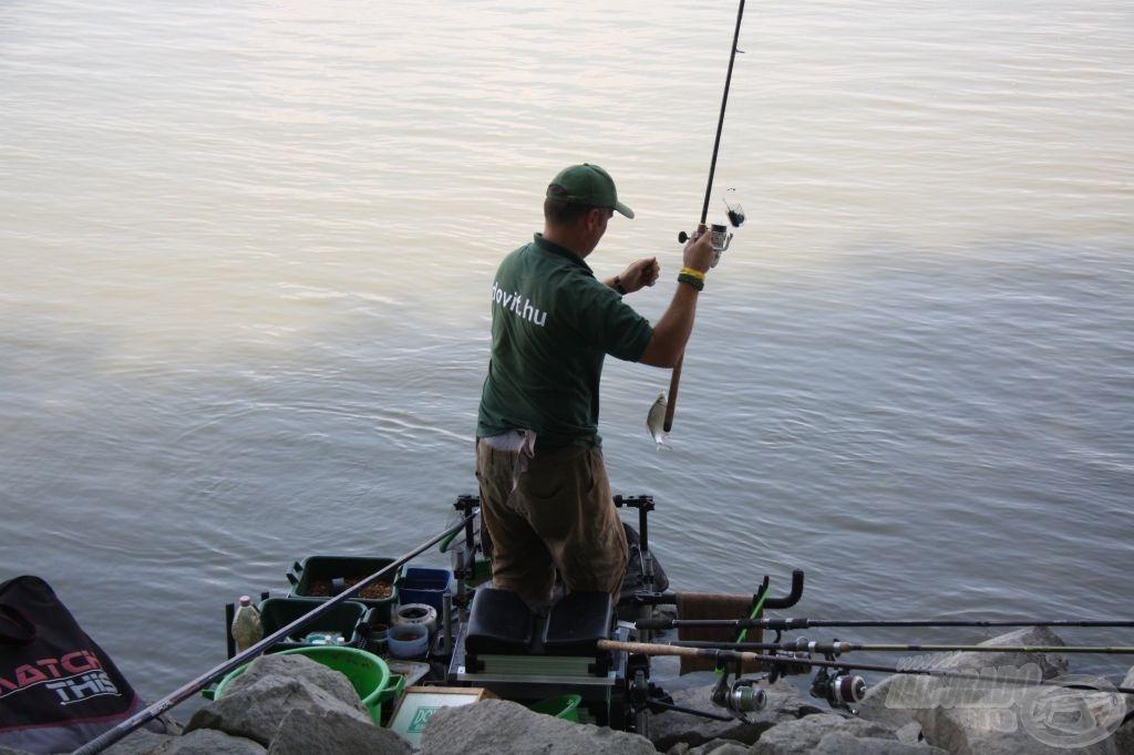 Nagyon sok az apró keszeg, mielőtt a darabos hal a horoghoz férne, szétcincálják a csalit