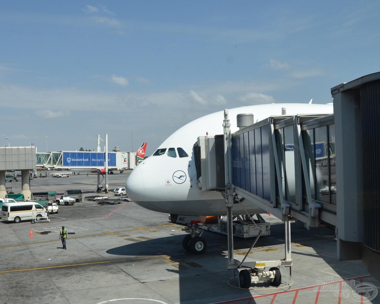 A hosszú repülős út izgalommal volt tele, vajon minden rendben megérkezik?