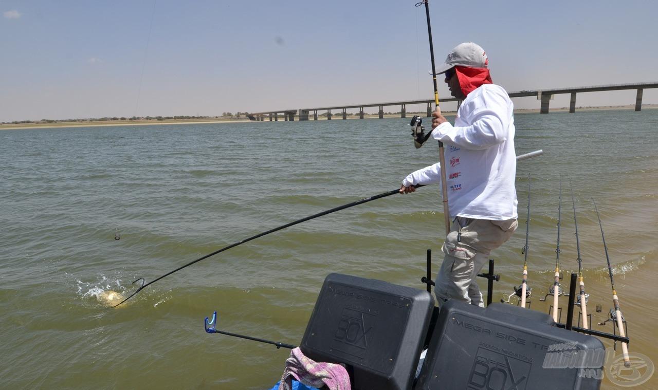 A keddi napon a legtöbb halat az abszolút szélső helyen horgászó Vidó Ferenc fogta, az ő információi is nagyon sokat jelentettek