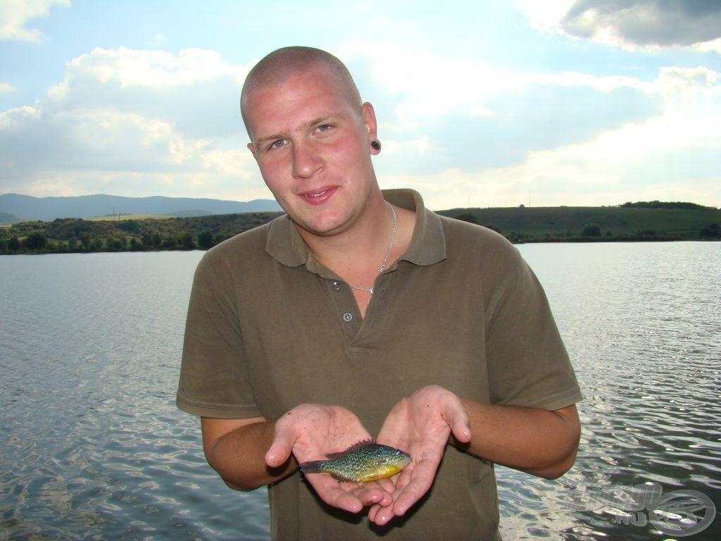 Egy biztos: nem ez a naphal volt Szilveszter legnagyobb hala...