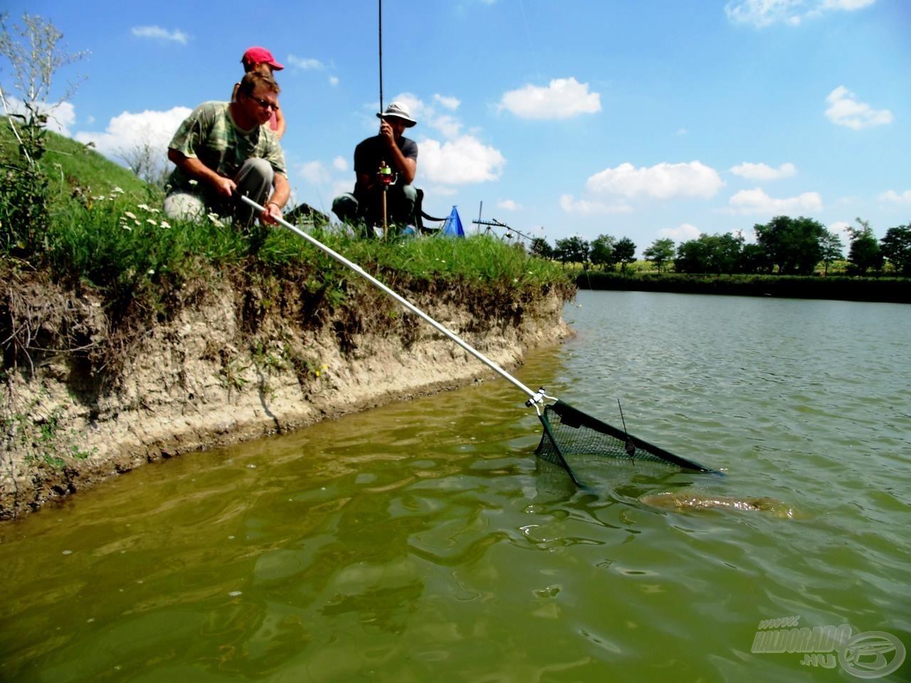 Szerencsére horgásztársaim segítségemre siettek, amit utólag is köszönök!