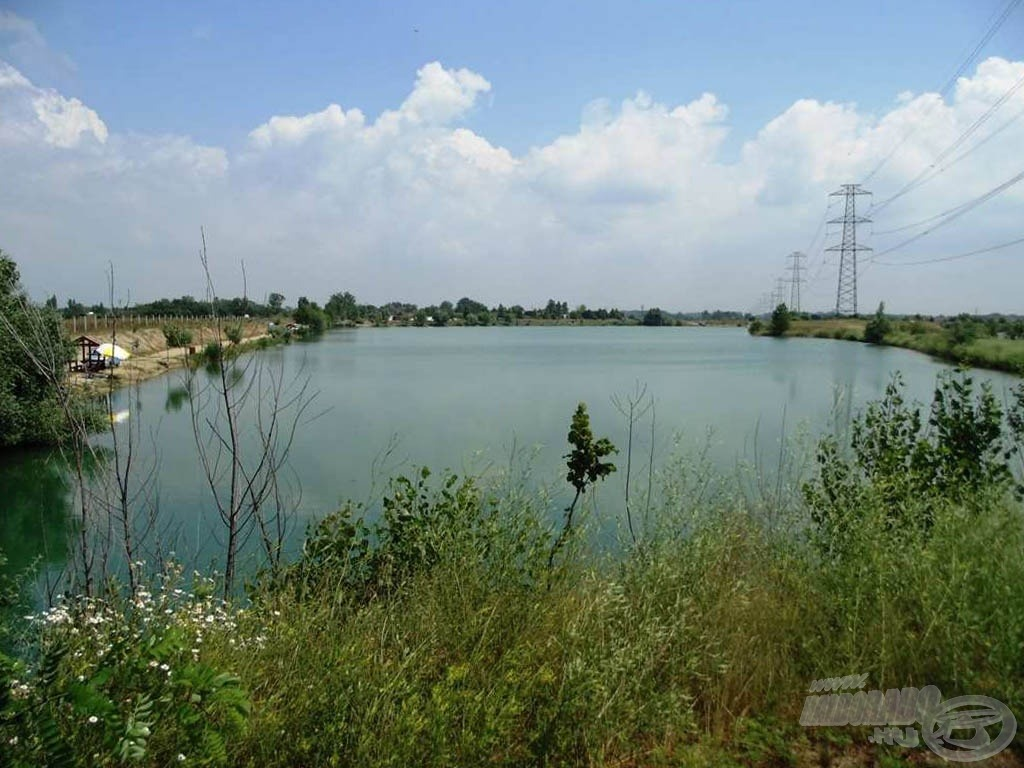A tó egyik ága