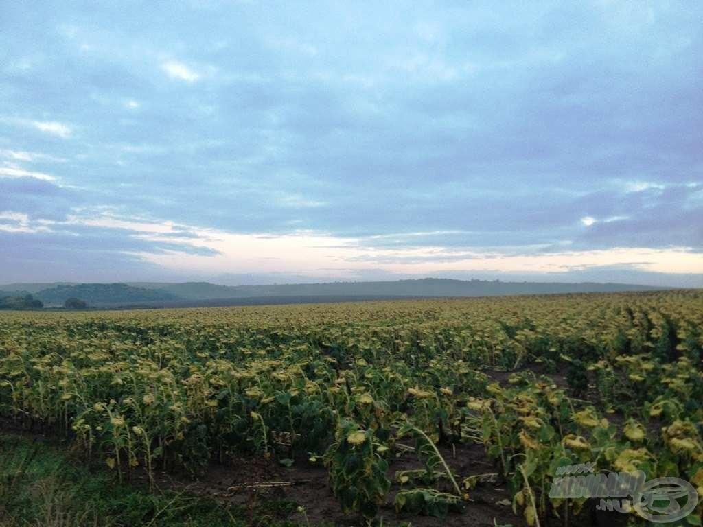 Szombat este már kezdett felszakadozni a felhőzet, és a csodaszép nógrádi táj megmutatta, milyen a ború utáni derű!
