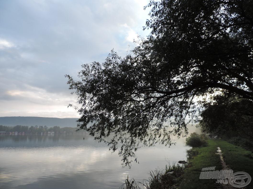 Séta a ködben