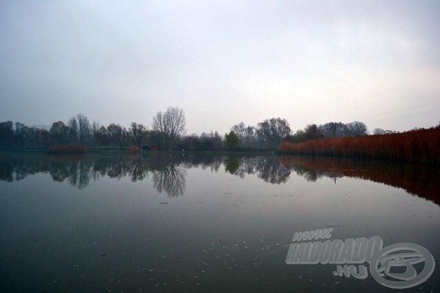 Novemberi reggel a tóparton