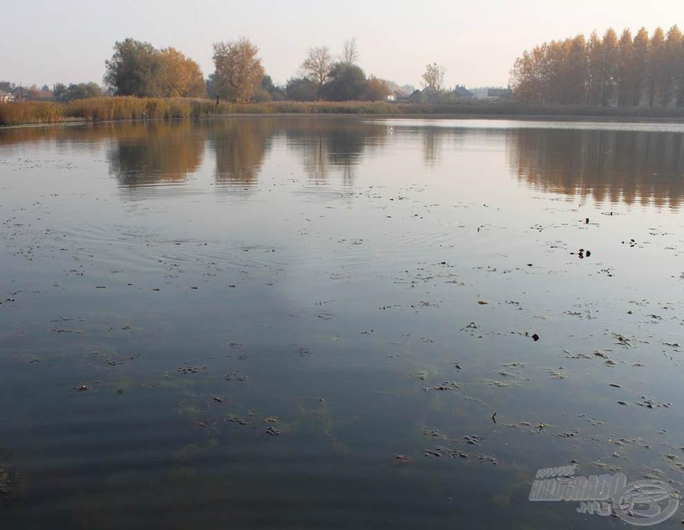 A hazai sekély vizeken esélytelen egy nagy önsúlyú jig fejet végighúzni
