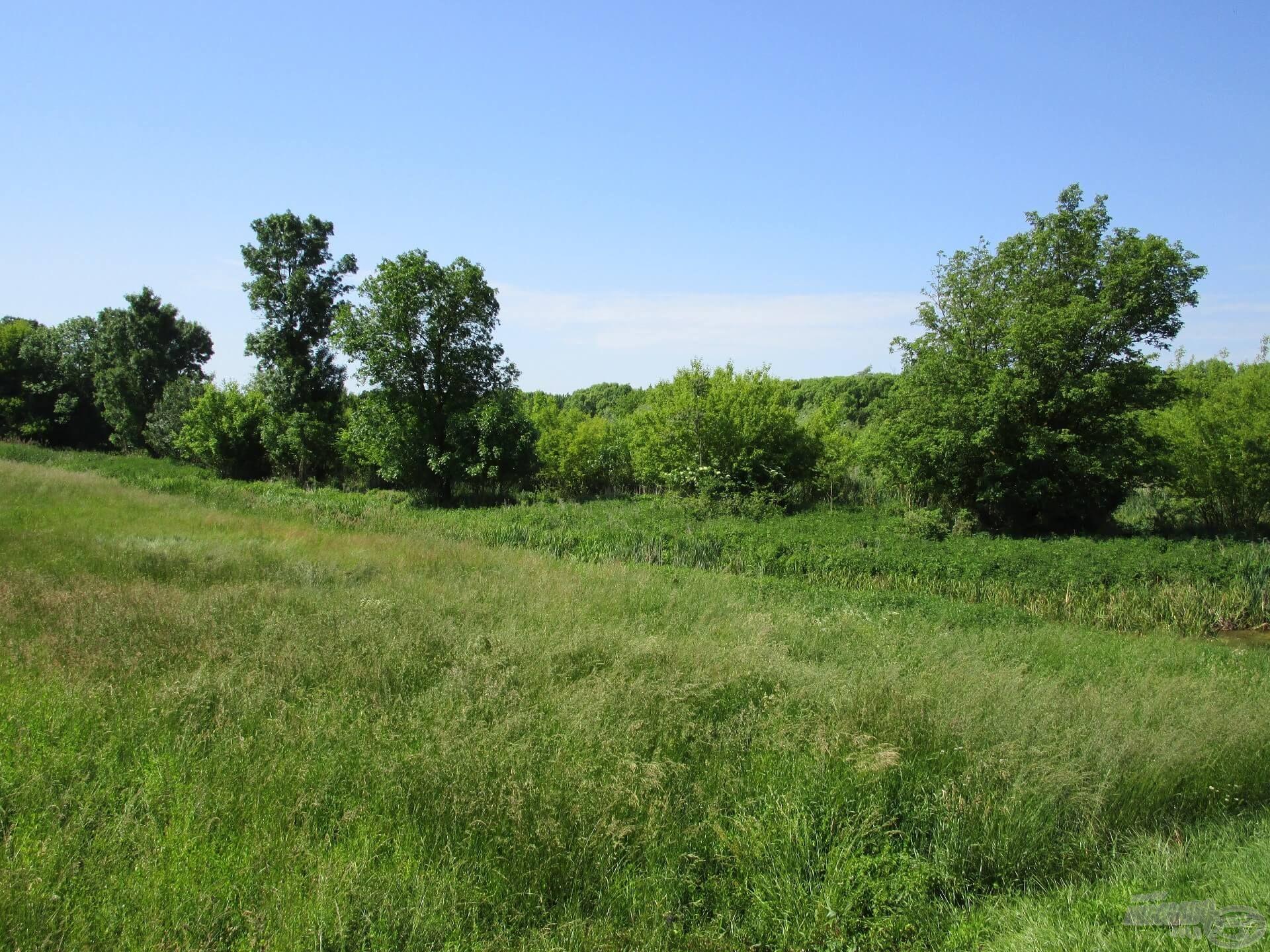 A Zala folyó és környéke igazi, vadregényes terület