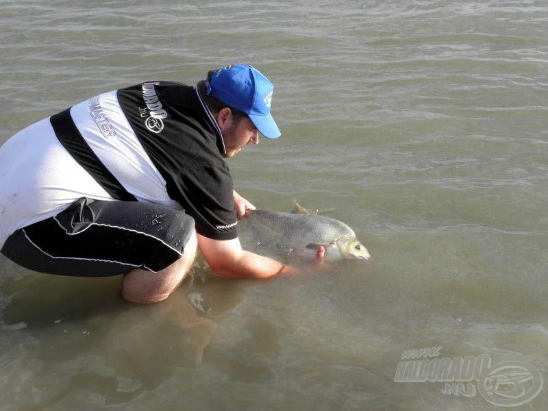 A szokásosnál is óvatosabban bánjunk a kapitális halakkal!