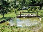 Készítsünk kerti tavat!