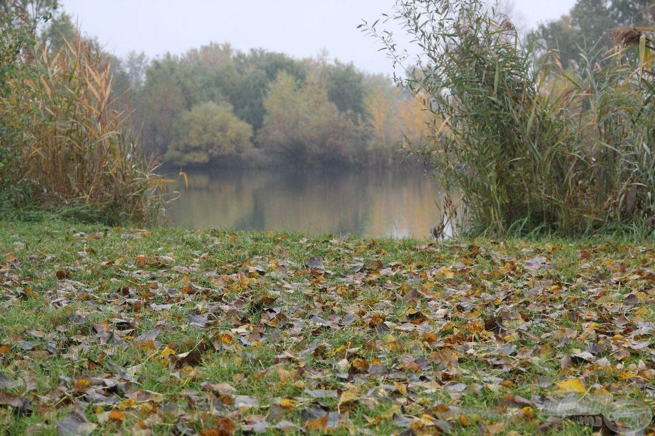 Imádok ősszel a vízparton lenni. Ugye milyen szép?