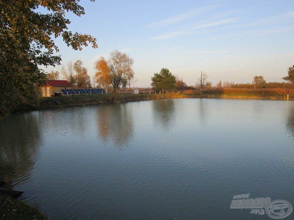 Érdemes volt aznap a tó elején horgászni
