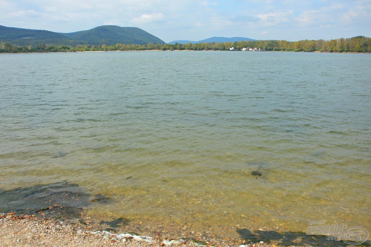 Az öböl vize tiszta, alja kavicsos, és ami a halaknak fontos, telis-tele van kagylóval