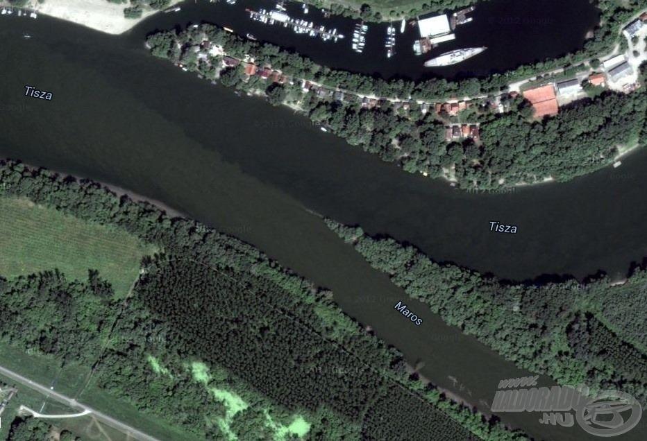 A két folyó színkülönbsége jelentős. Amikor a műholdas kép készült, a Maros tisztábbnak volt mondható (kép: Google Earth)