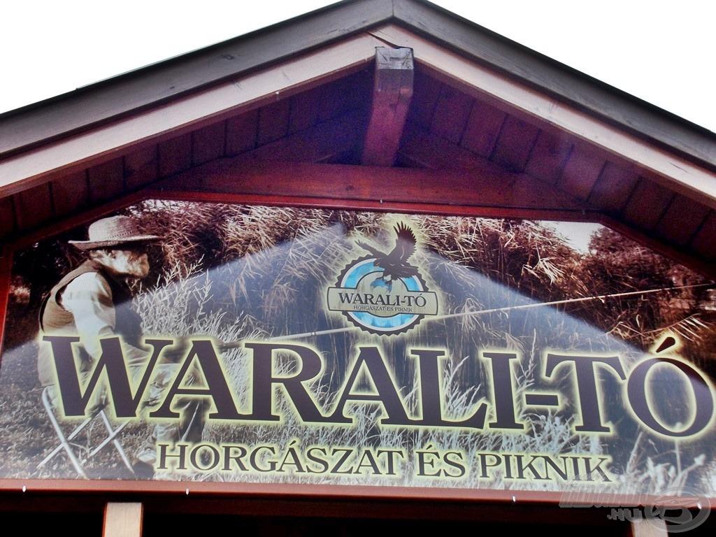 Az első ilyen horgászatom helyszínéül a bajai Warali-tavat választottam