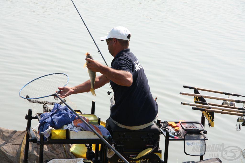 Vidó Ferenc egy átlagos méretű hala