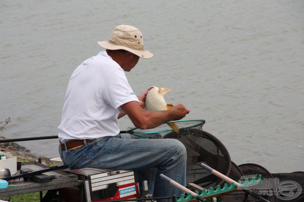 id. Sipos Gábor nagy rutinnal fogja a halakat