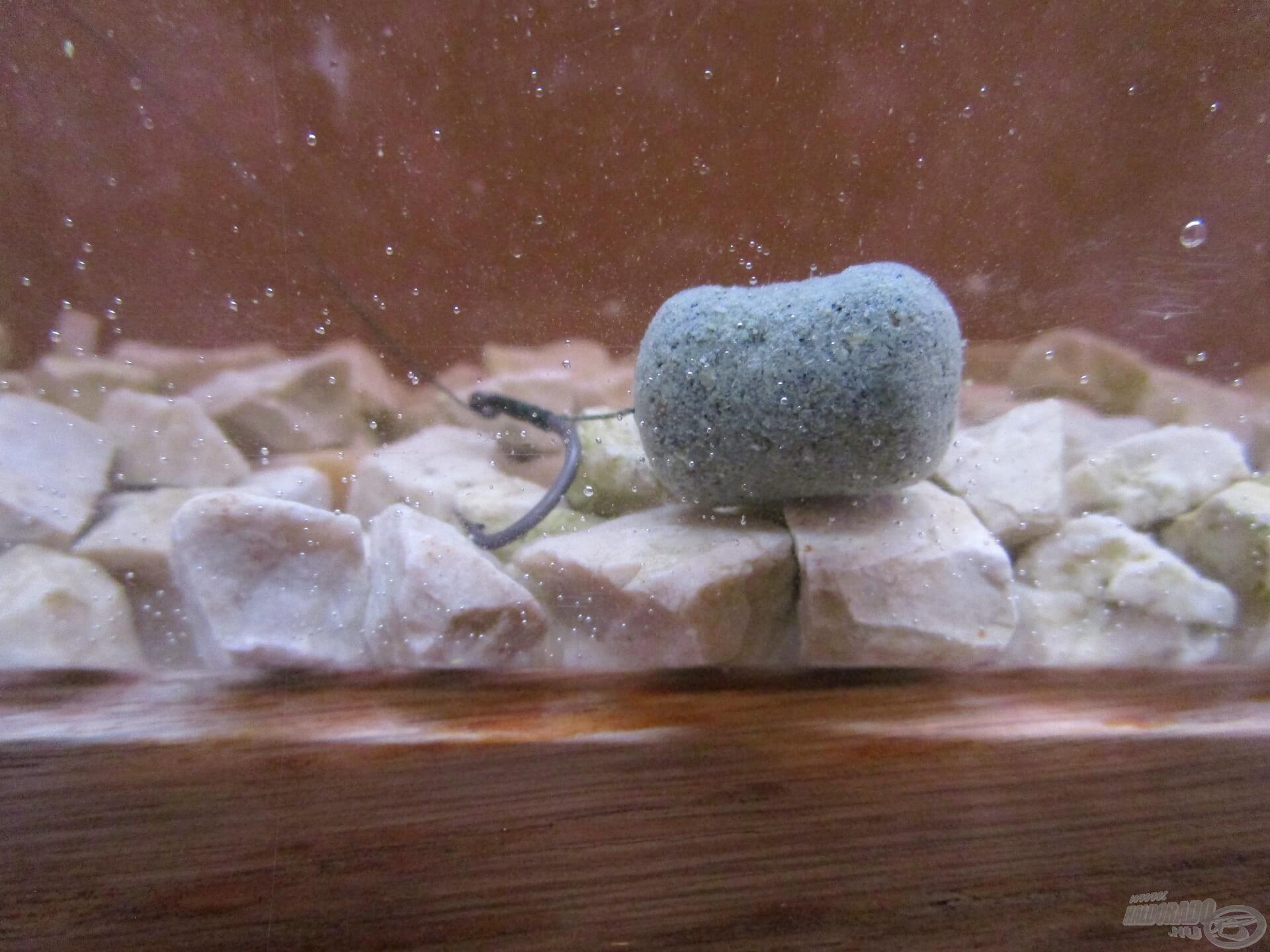 A fekvő csalik felkínálása a legegyszerűbb. A képen egy 6-os Korum horog van 15 mm-es tüskével és egy 18 mm-es oldódó csalival