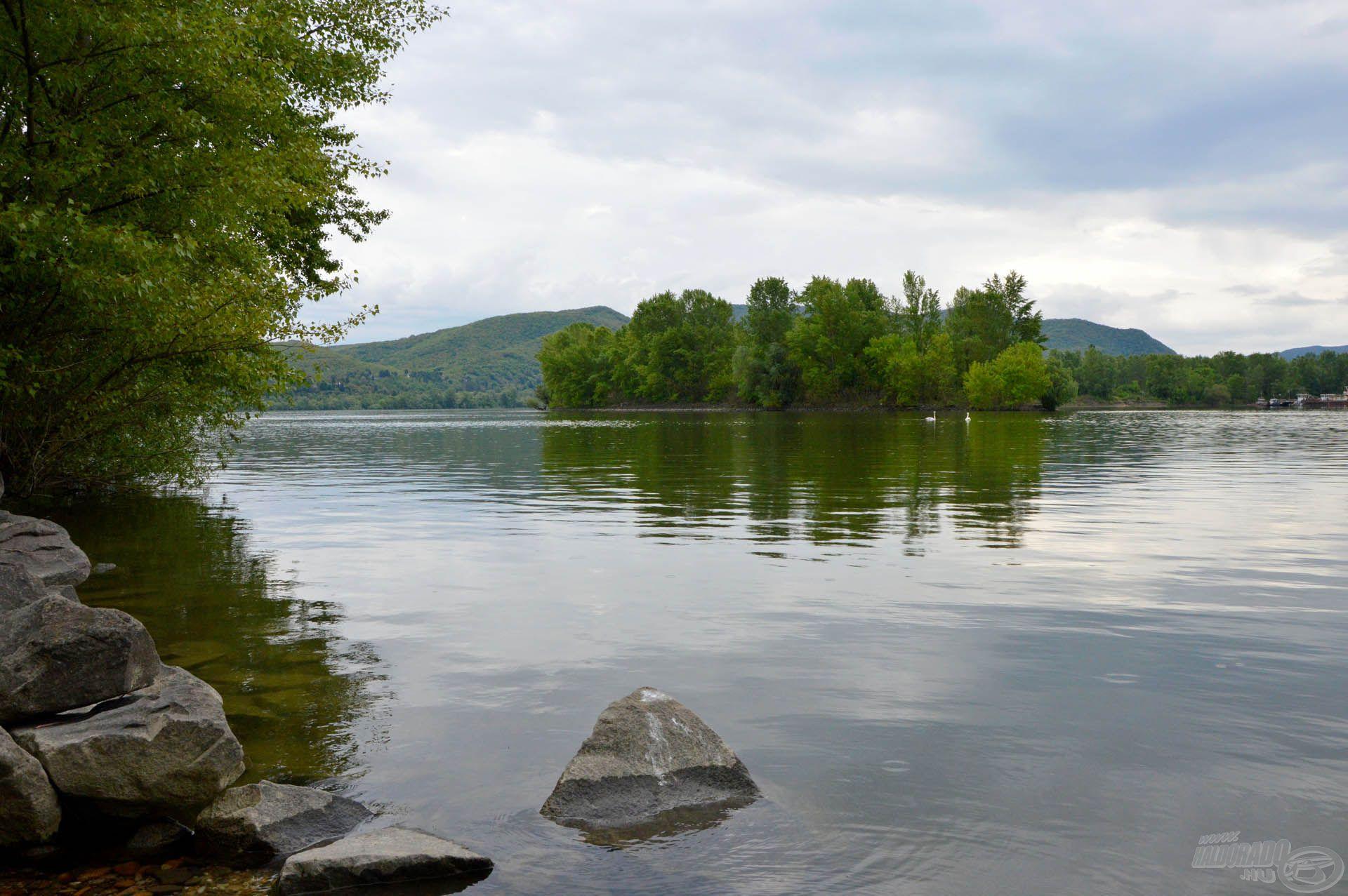 """Balra a Duna, míg jobbra a Pilismaróti- öböl. Az öbölbejáratnál mindig nagy a """"forgalom"""", így ennek közelében érdemes keszegfélékre horgászni"""