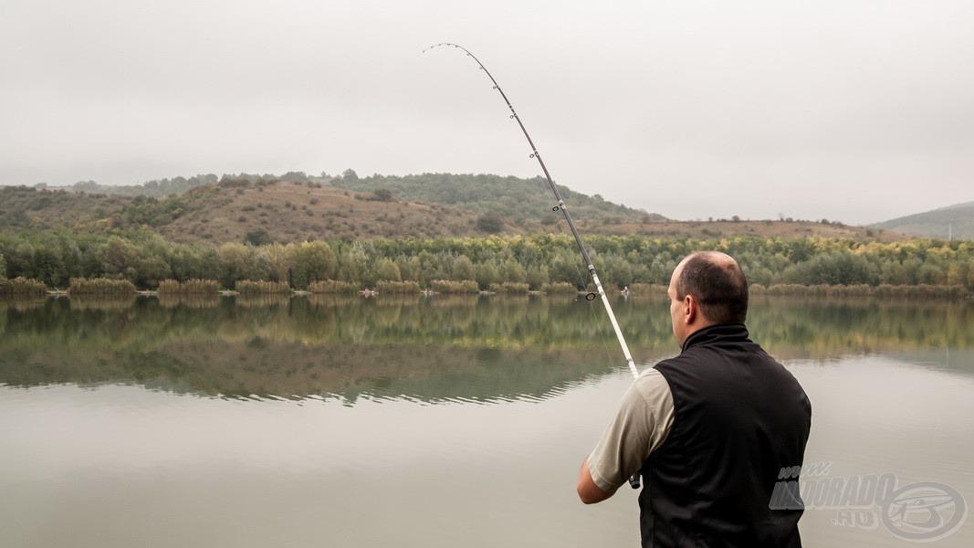 Imádtam a kölcsön feederrel fárasztani, hihetetlen élményt nyújtott minden hal partra segítése