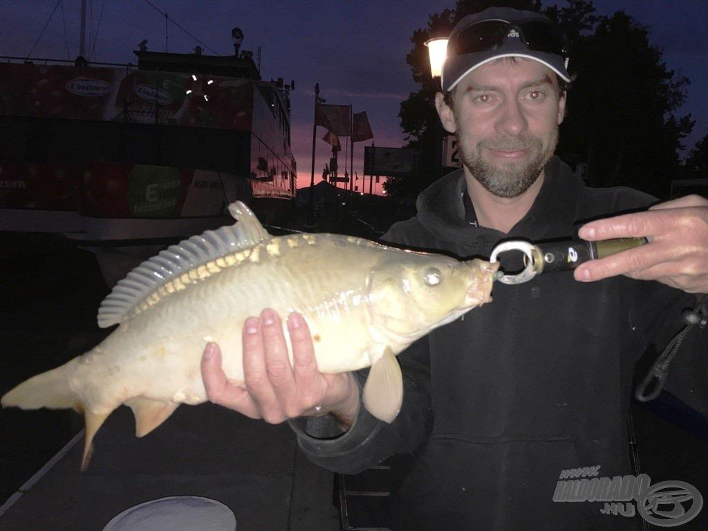A legnagyobb hal: Jantner Csabi szájba pergette ezt a 41 cm-es pontyot