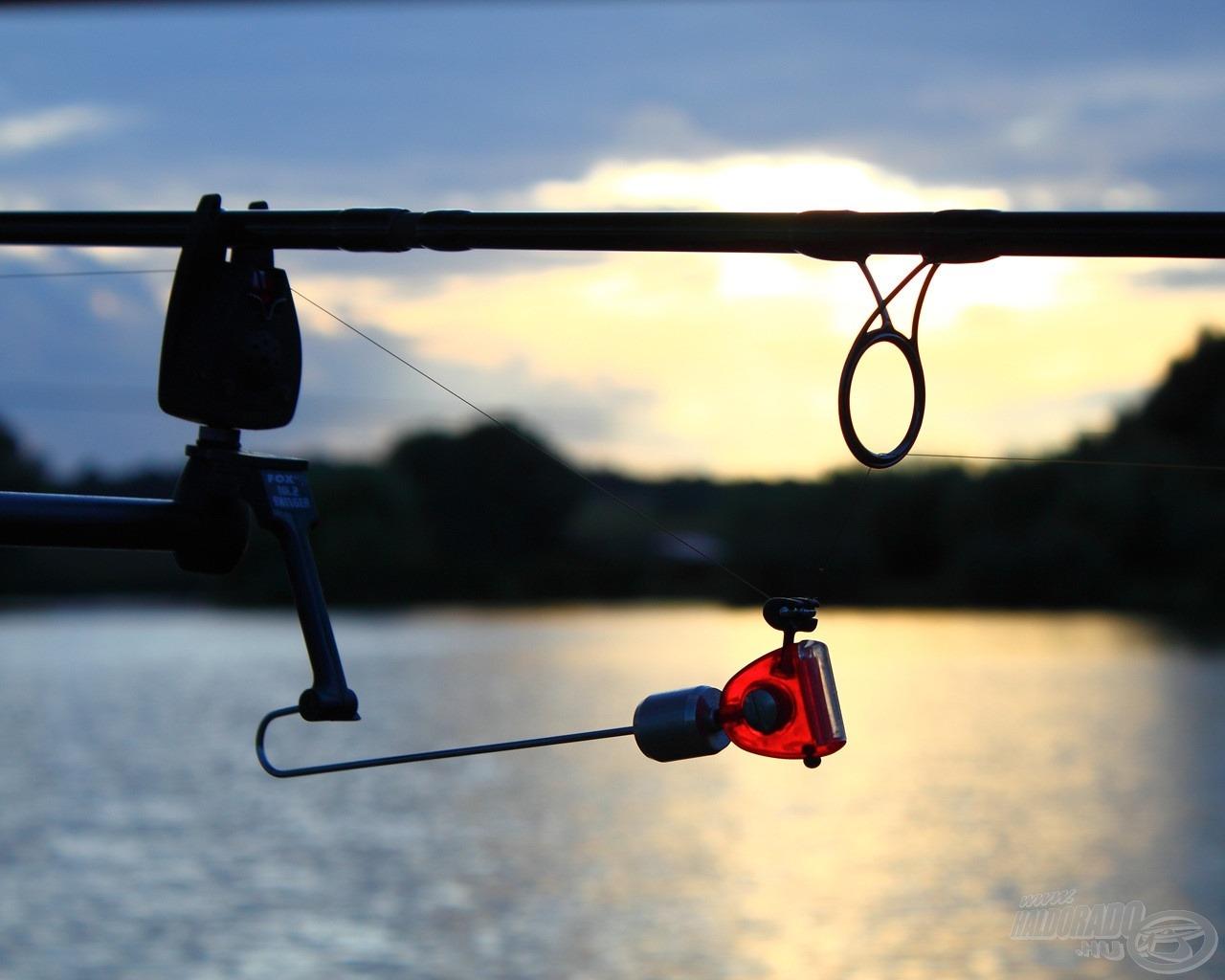 Sok szép képet szoktál készíteni a horgászatok során? Jól fogalmazol? Oszd meg velünk élményeidet, megéri!
