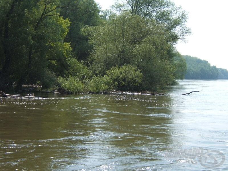 A víz felszíne árulkodik, itt gödör és akadó is van