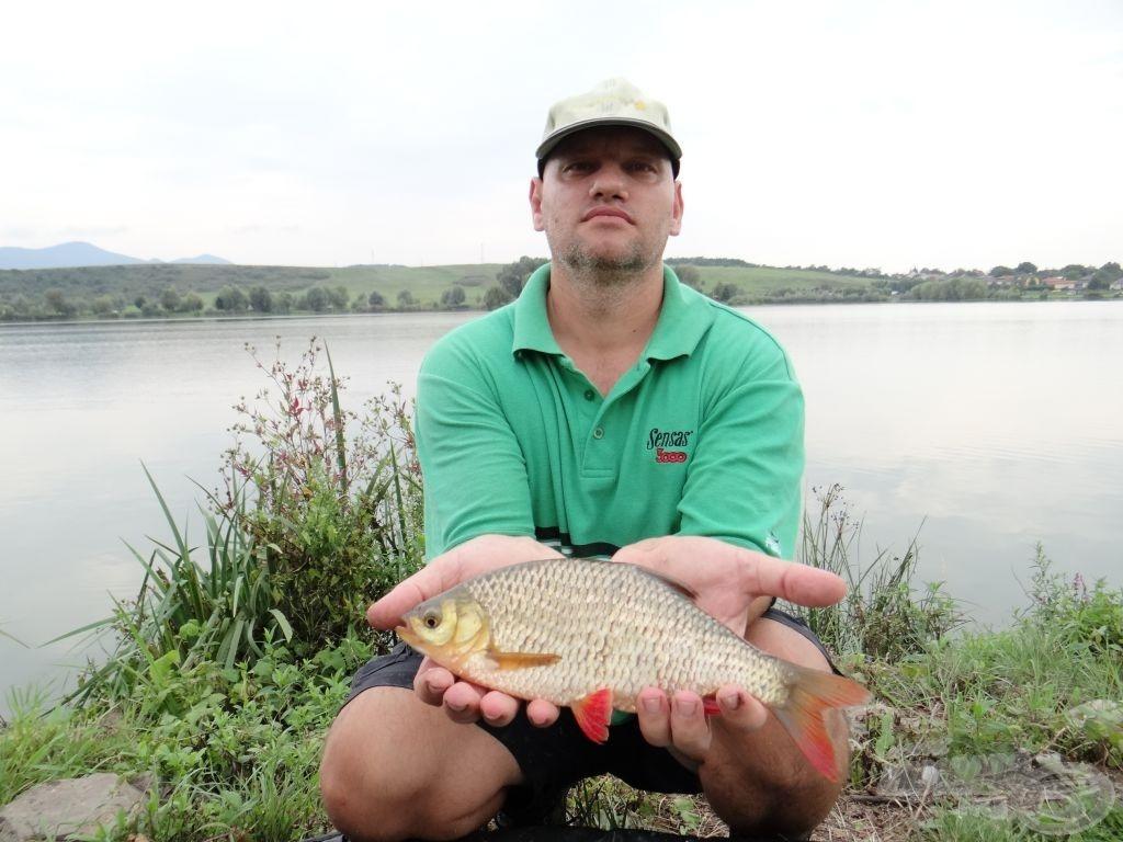 Nekem az egyik legszebb magyar hal, az egyik legízesebb névvel: egy csodaszép veresszárnyú