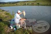 Magyarország  Horgászkirálya