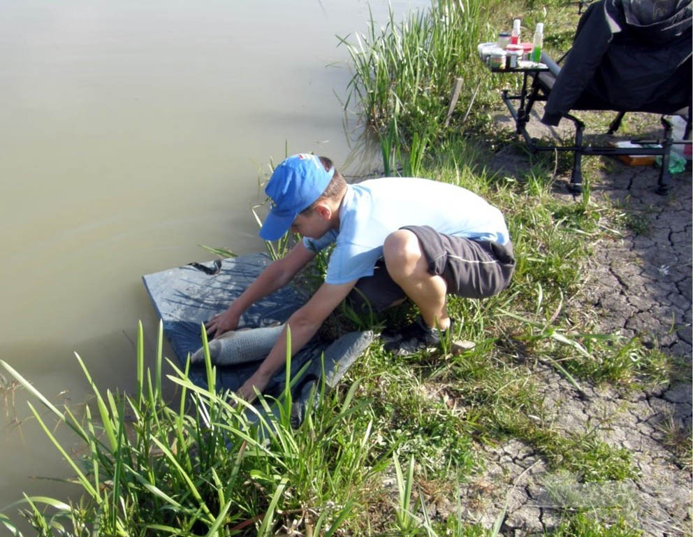 Természetesen minden hal visszakerült a tóba