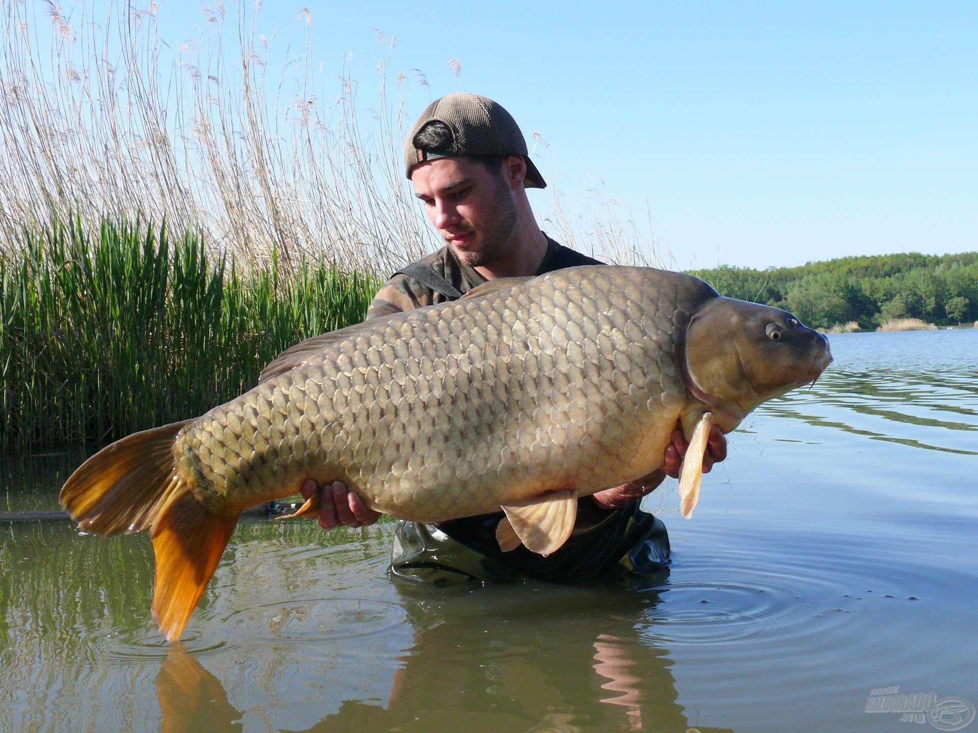 Farkas Szabolcs szenvedélyes pontyhorgász, ráadásul azon kevesek közé tartozik, akik fogtak már Magyarországon 30 kg-ot meghaladó súlyú pontyot!