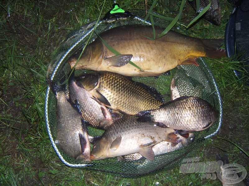 Ez pedig a késő délutánba nyúló horgászat eredménye