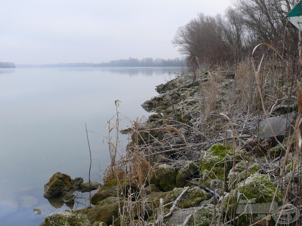 A kiáradt Duna a kövezés tetejét nyaldosta, vize zavaros volt