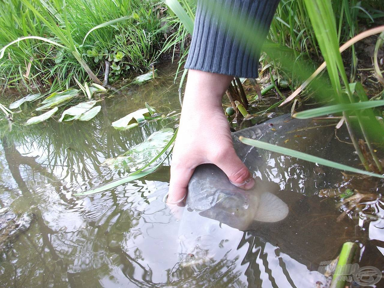 Mert horgászni jó…