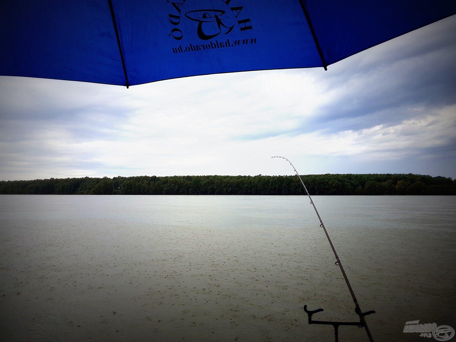 A gyors folyású, közepesen mély részen folytattam a horgászatot, melytől az eső sem tántorított el