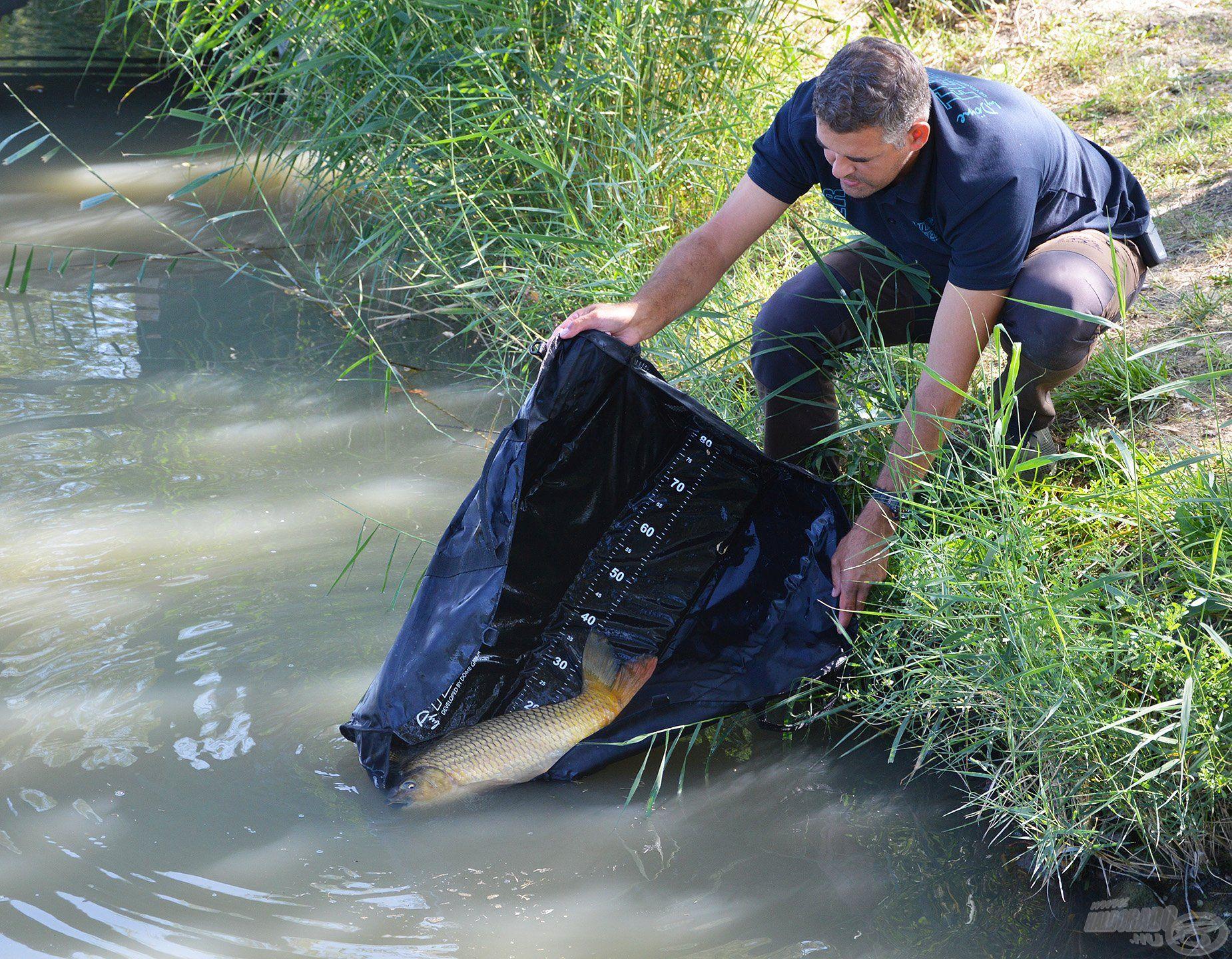 Matracról is vissza lehet engedni a halat. Sőt! Így a legbiztonságosabb!