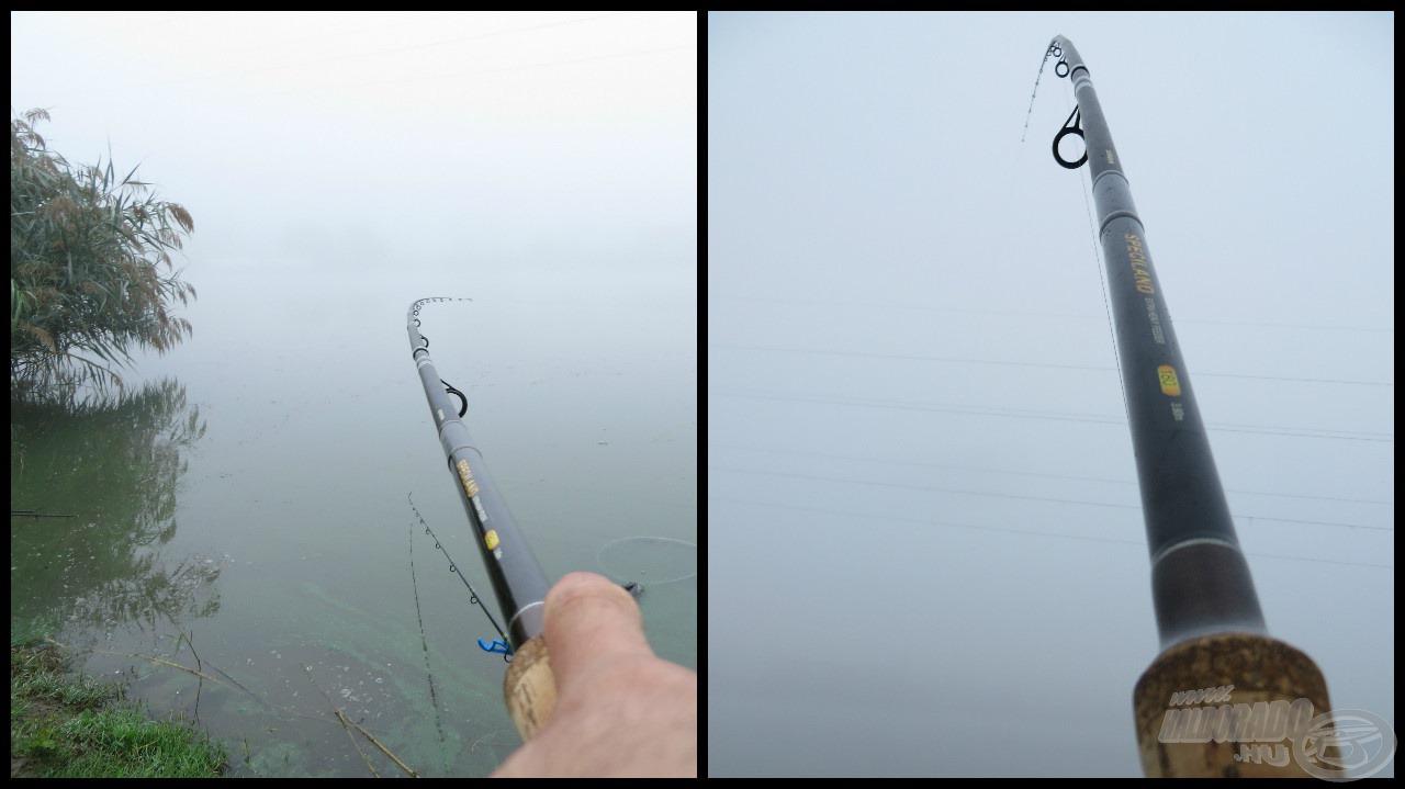 Nem igazán lehetett látni, merre jár a hal, csak a zsinór iránya utalt rá