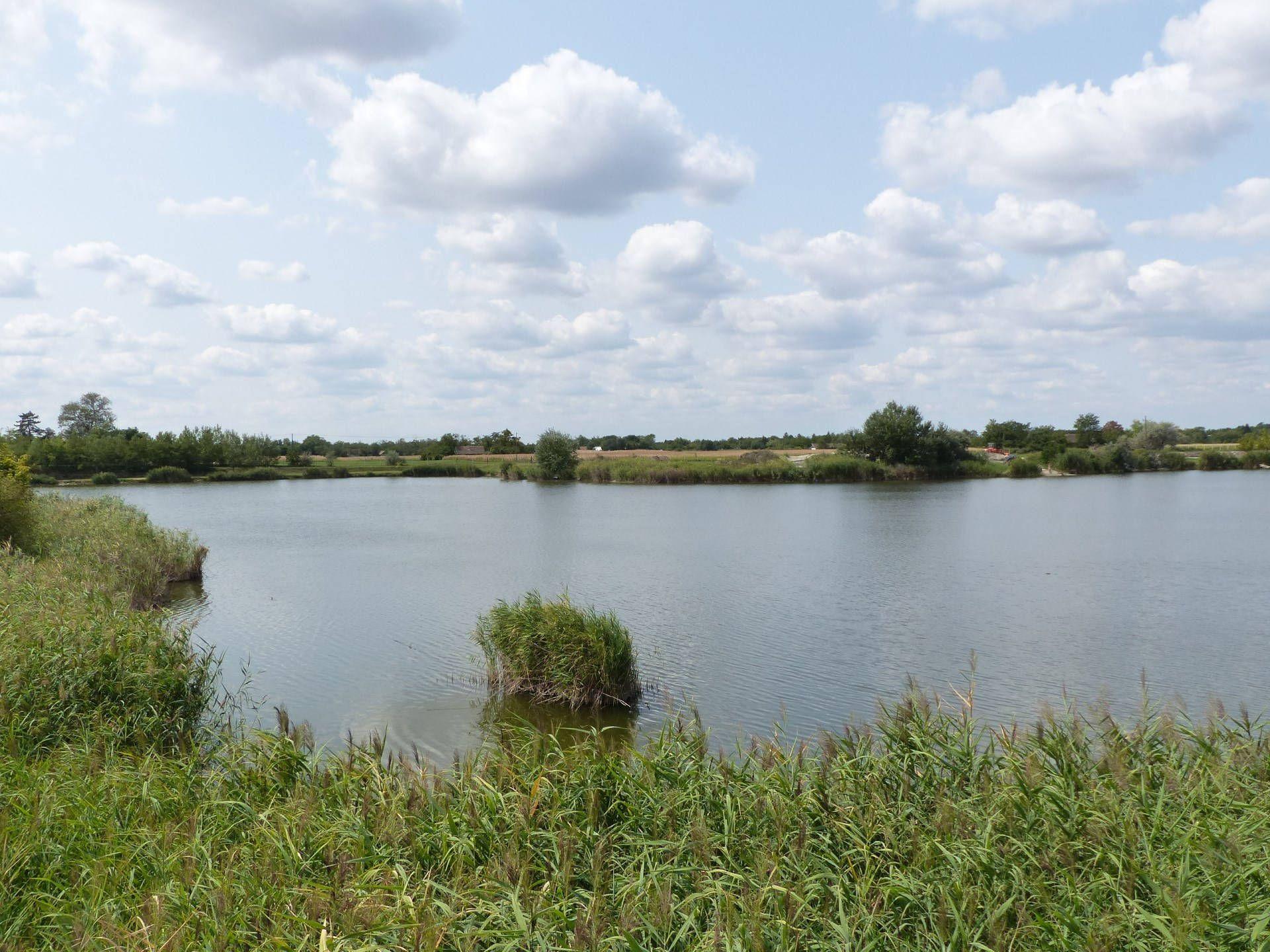 A képen balra a tó hátsó, mély vízi része látható…