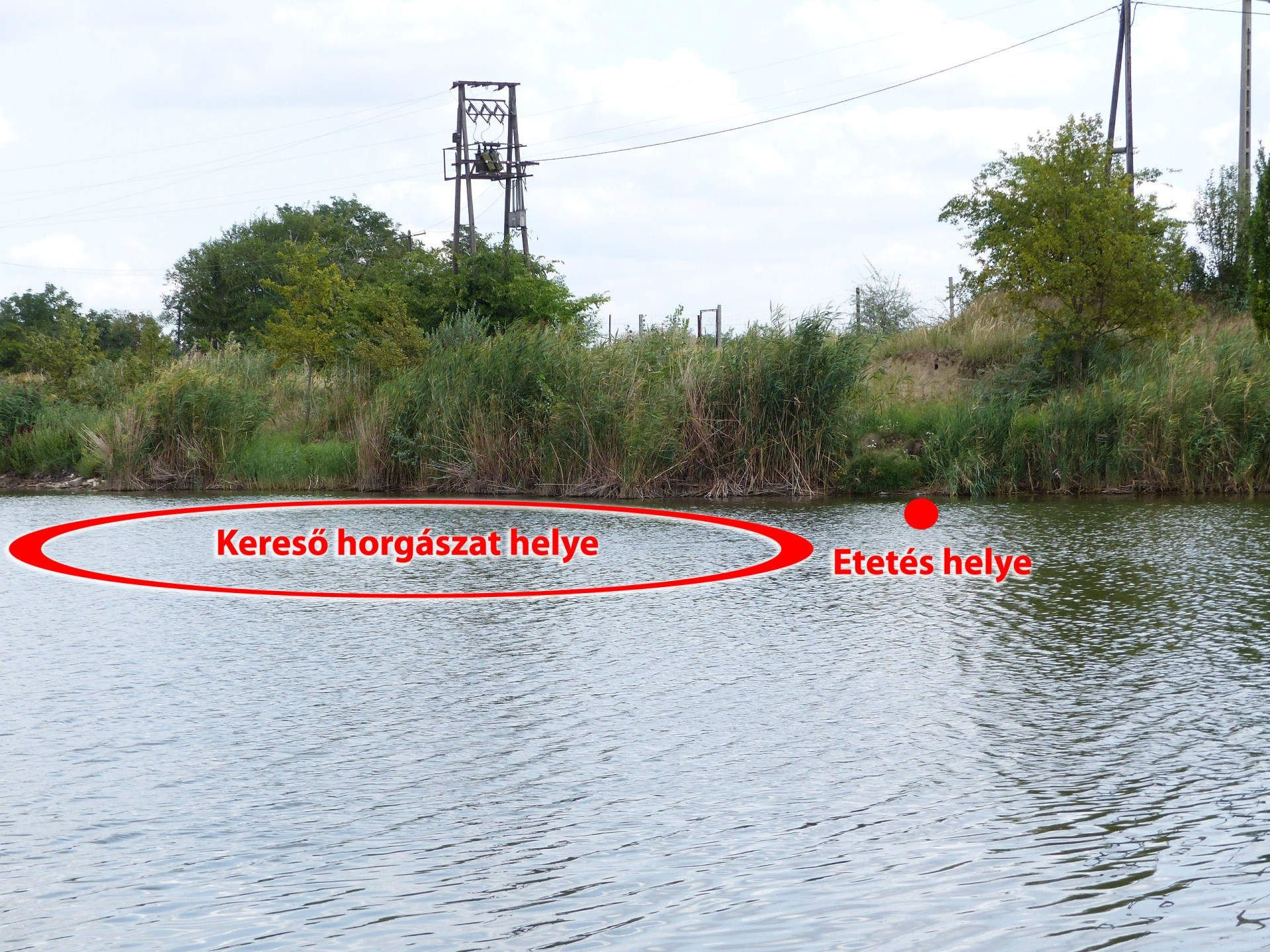 Egyik botommal pontosan az etetésen horgásztam, míg a másikkal kereső horgászatot végeztem, az etetéstől folyamatosan távolodva