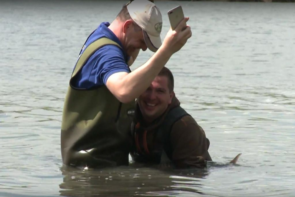 Két férfi, egy mobiltelefon, és egy vízből kikandikáló halfarok. Mielőtt gyorsan ítélkeztek, nézzétek meg a videót!